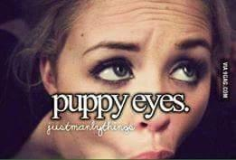 ab9 puppy eyes just little things know your meme,Eyes Meme