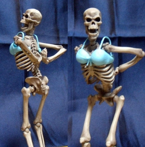 Skeletons dont have boobs but they can try  Skeletons  Know