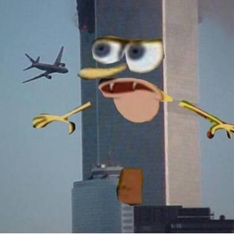 bob, sponge 6e9