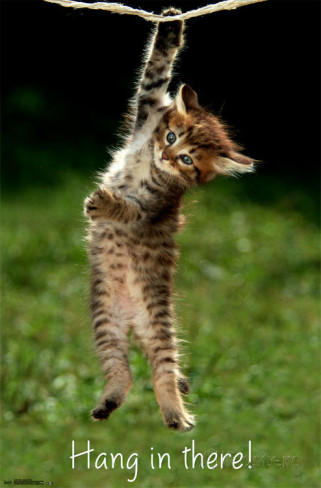 no matter how bad things seem.... just hang in there! - nutty ...
