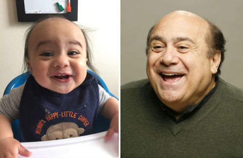 d3f danny the baby danny devito know your meme