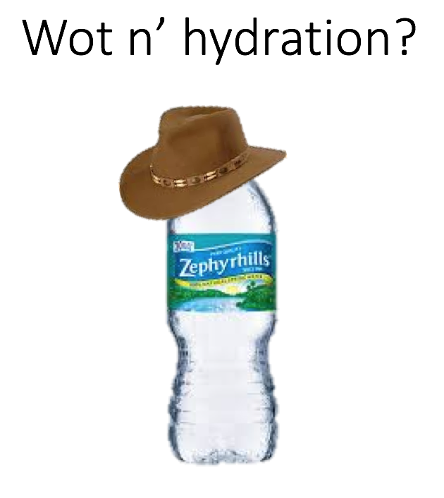 What In Tarnation Know Your Meme