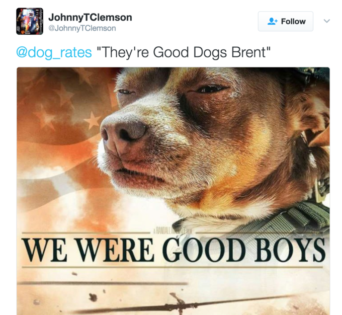 We Rate Dogs They Re Good Dogs Brent