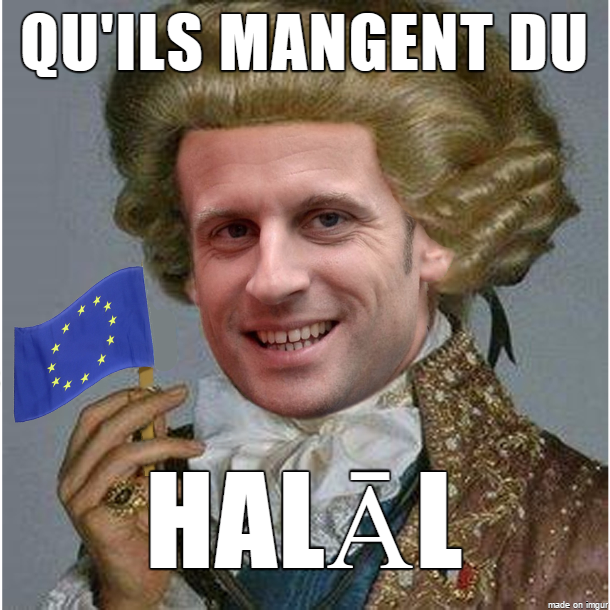 8ca aristocrat macron 2017 french presidential election know your meme