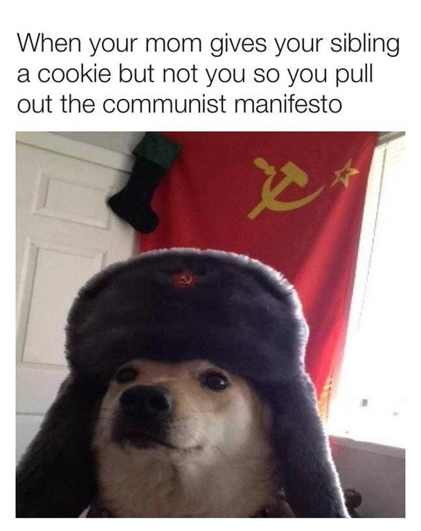 Comrade Doggo meme of when your brother gets a cookie but you don't