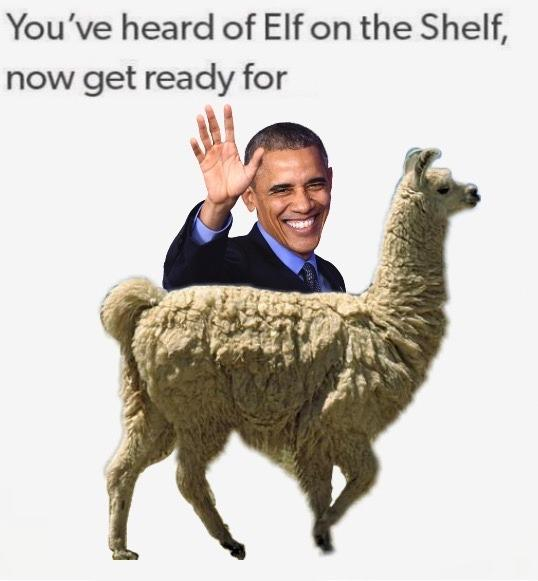 31 'You've Heard Of Elf On The Shelf' Memes That Are Way ...