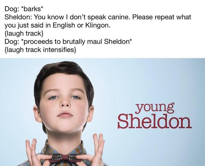 Young Sheldon Know Your Meme
