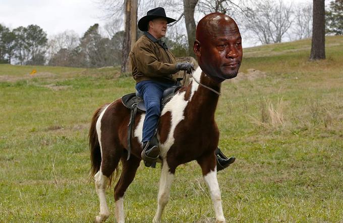 horse sexual predator