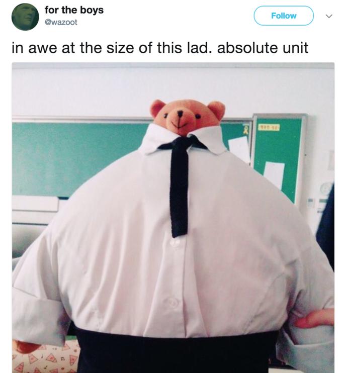 Absolute Unit | Know Your Meme