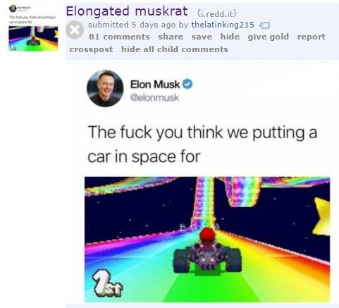 Elongated muskrat (Giredd.it) submitted 5 days ago by th elatinking215 81 comments share save hide give gold report crosspost hide all child comments Elon Musk The fuck you think we puttinga car in space for
