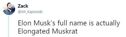 Zack @Mr_Kapowski Elon Musk's full name is actually Elongated Muskrat