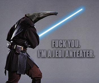 [Image: jedi-anteater.jpg]