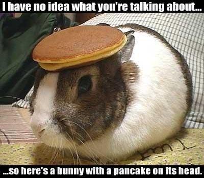 pancake-bunny.jpg