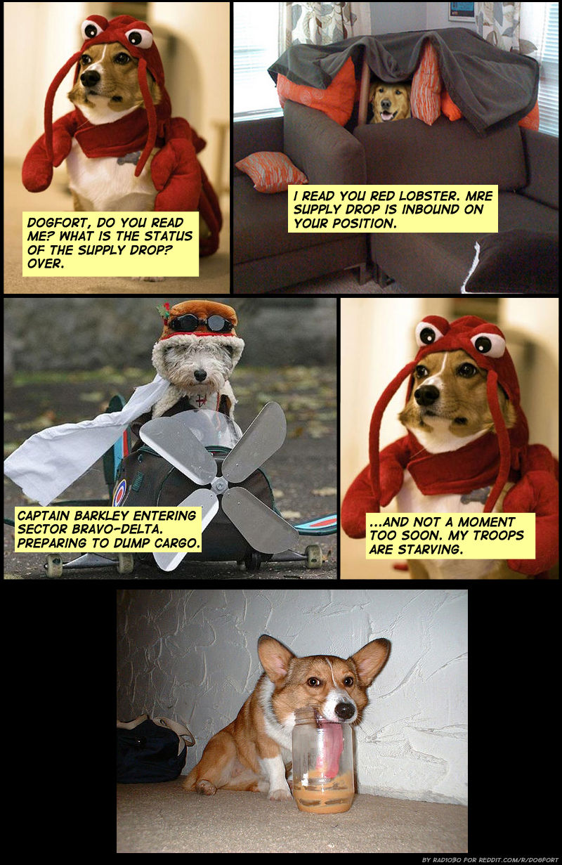 [Image - 88387] | Dog Fort | Know Your Meme