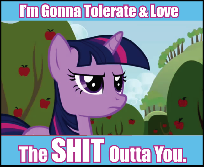 129764660282 image 99735] my little pony friendship is magic know your meme,My Little Pony Memes