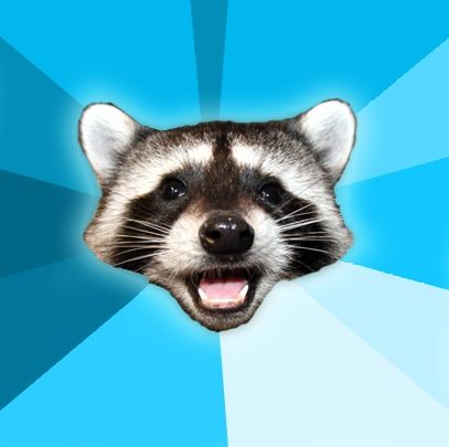 Bad Pun Raccoon Template