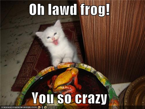 funny captions how did you get so crazy frog image 170962] oh you so crazy know your meme