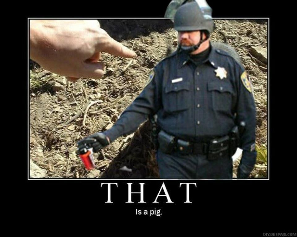 381172_10150435924509879_810489878_8452348_1410901563_n image 207844] casually pepper spray everything cop know your meme
