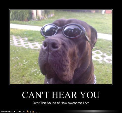 Image 212912 i 39 m sorry i can 39 t hear you over the sound of how awesome i am know your meme - Funny and awesome wallpapers ...