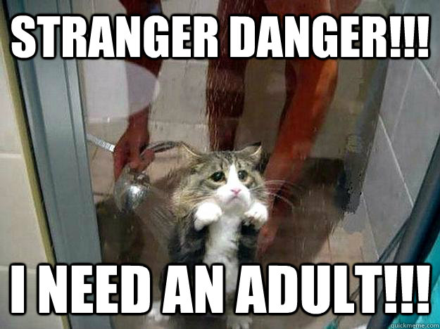 358yk9 image 222543] i need an adult know your meme,Meme Muumi