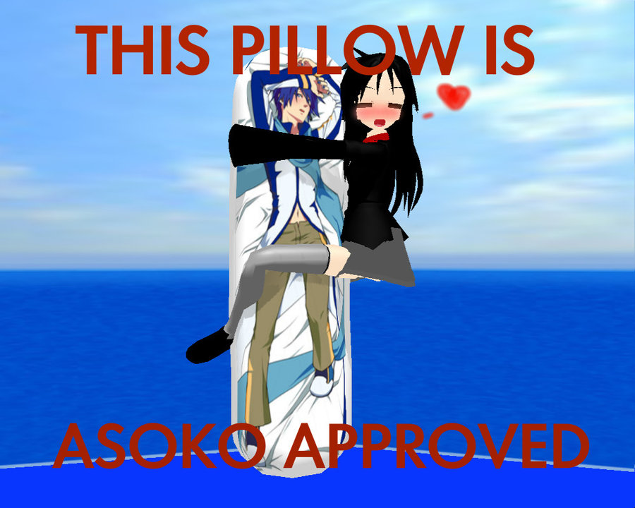 Image 222966 Dakimakura Know Your Meme