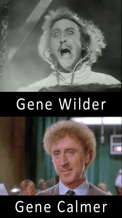 ef5 gene wilder name puns know your meme