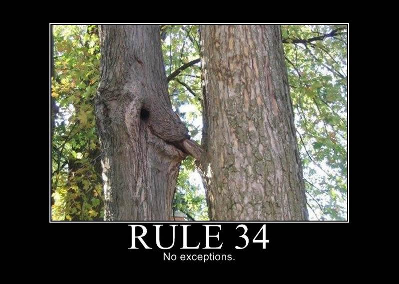 Rule 34.