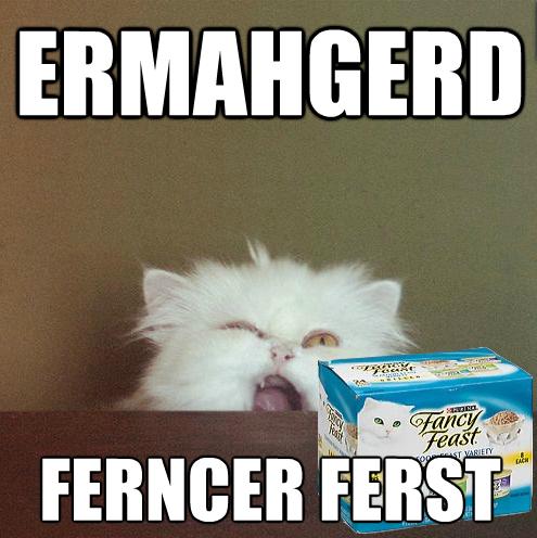 48f ermahgerd ermahgerd know your meme