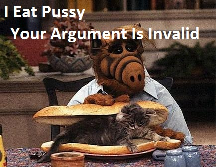Alf and Cat | Your Argument is Invalid | Know Your Meme