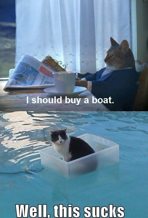 ef2 image 431314] i should buy a boat cat know your meme,Boat Meme