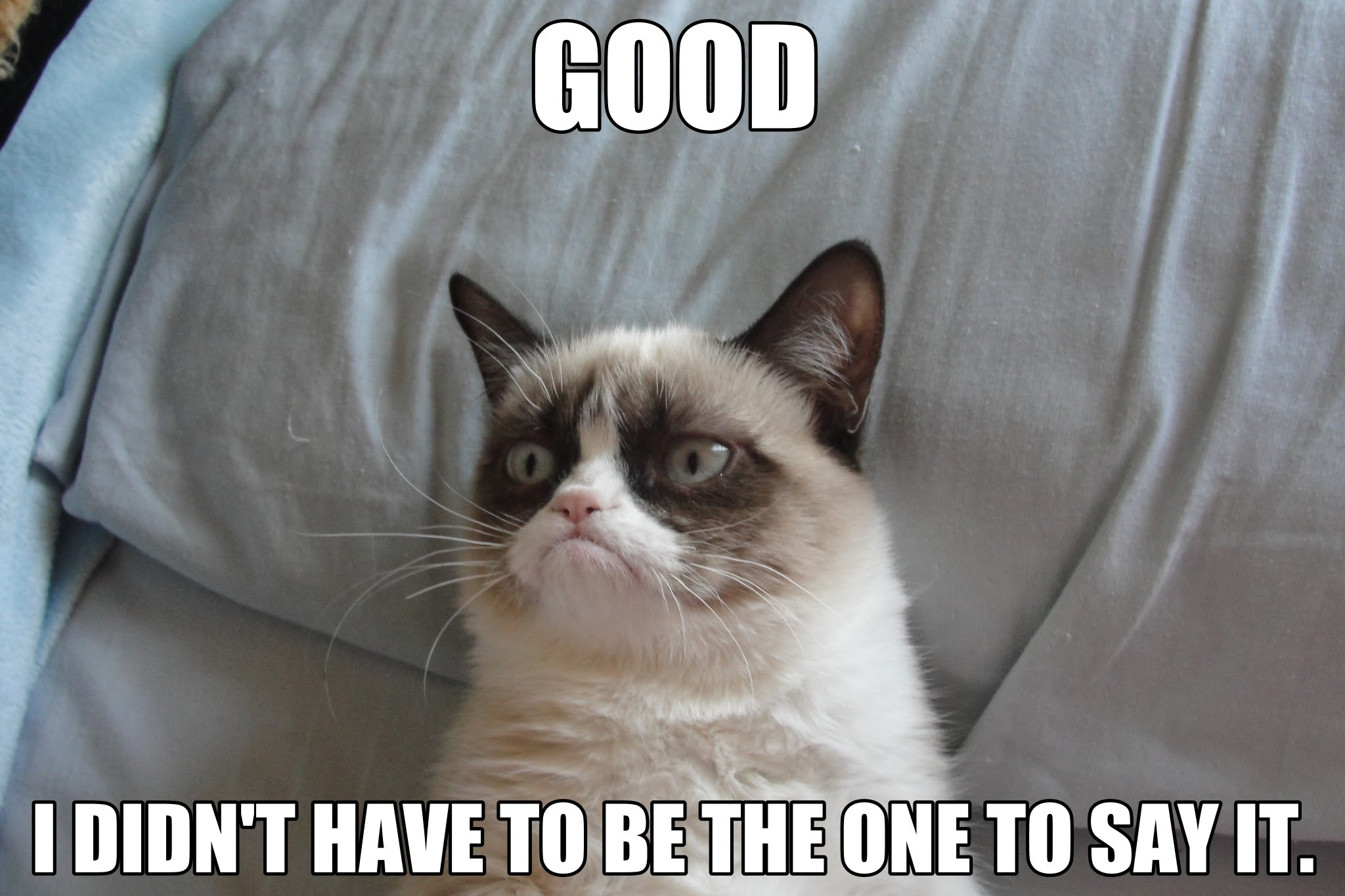 I Ll Miss You Funny Meme : Image grumpy cat know your meme