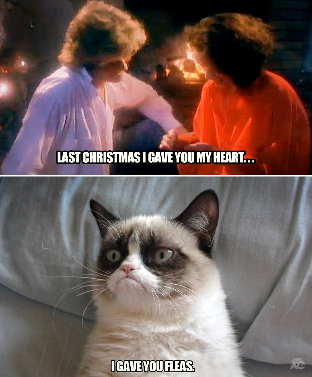 Last Christmas... | Grumpy Cat | Know Your Meme