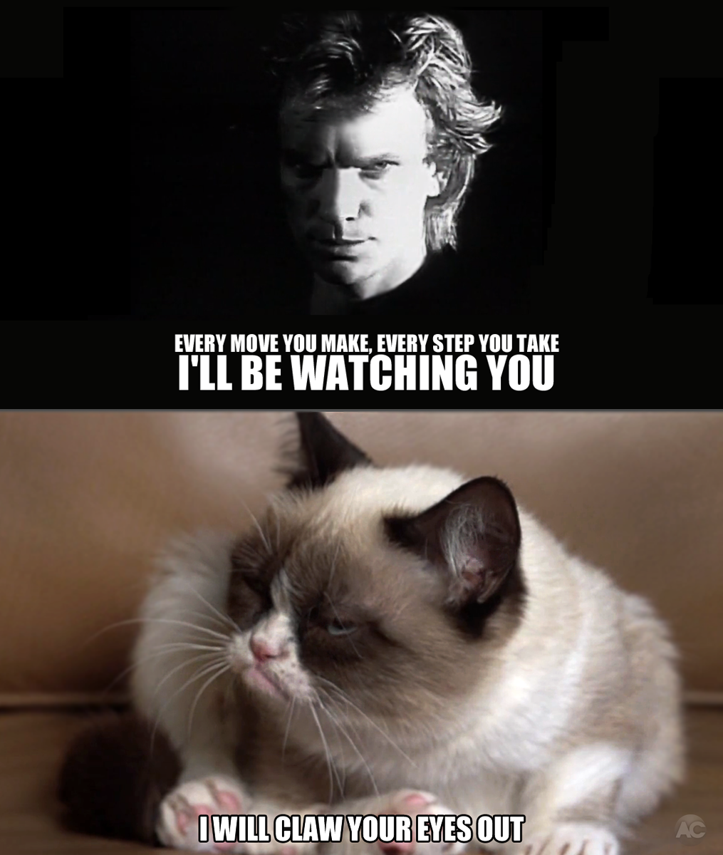 a48 i'll be watching you grumpy cat know your meme