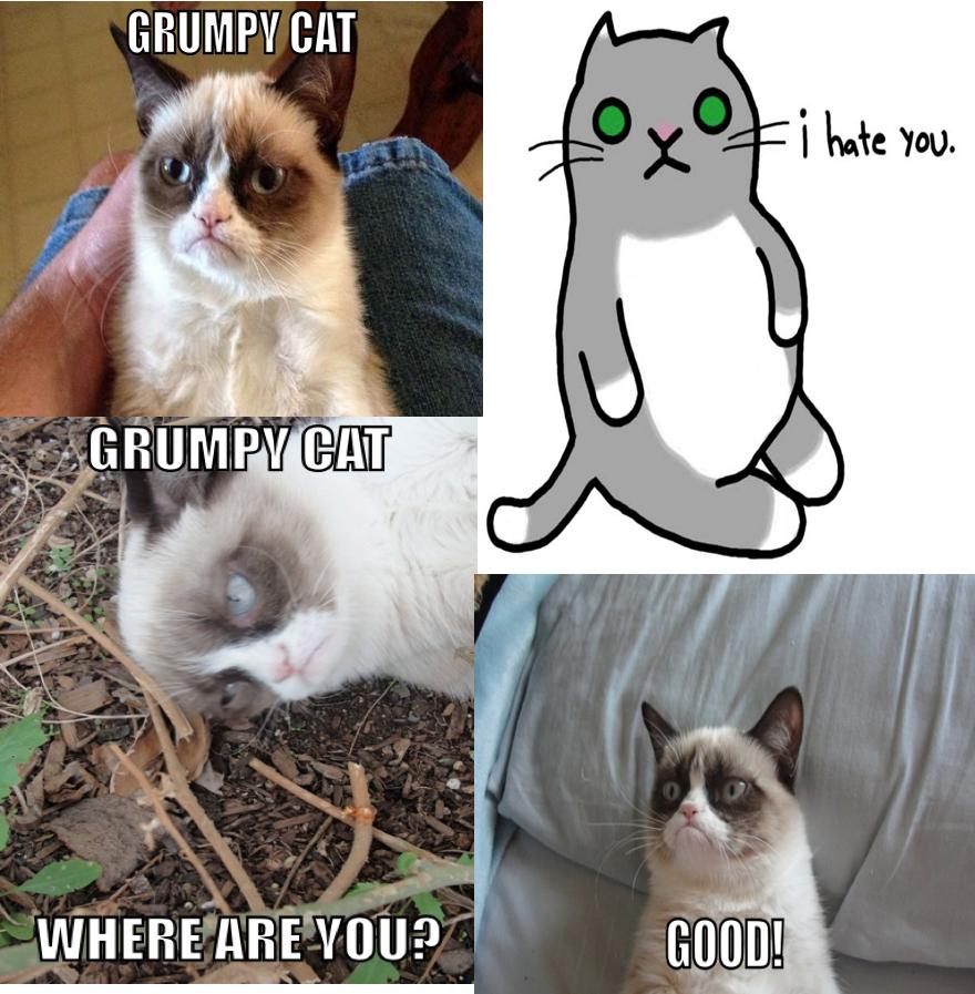 3de grumpy cat grumpy cat know your meme