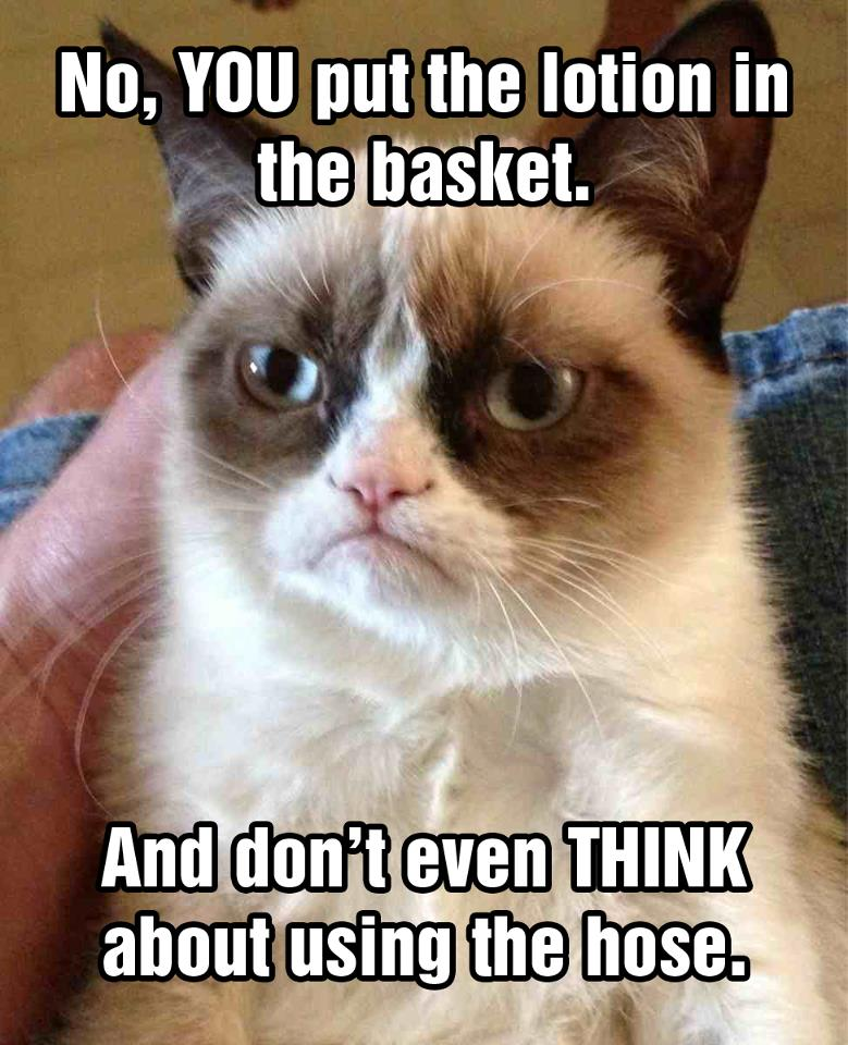 e24 silence all the lambs grumpy cat know your meme