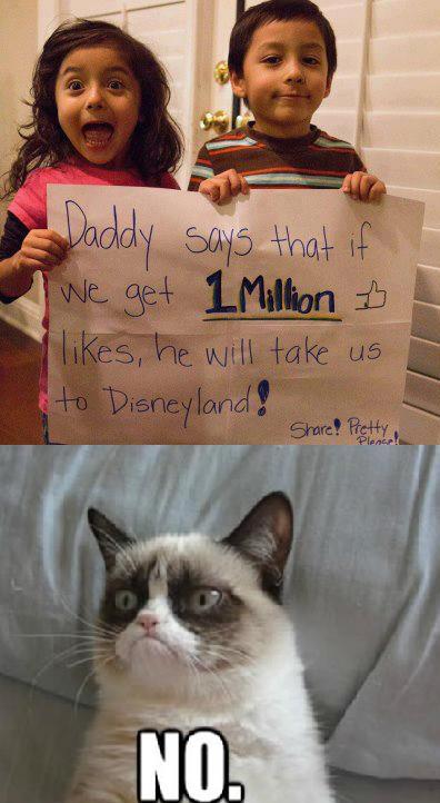 grumpy cat says no to disney world | Grumpy Cat | Know ...