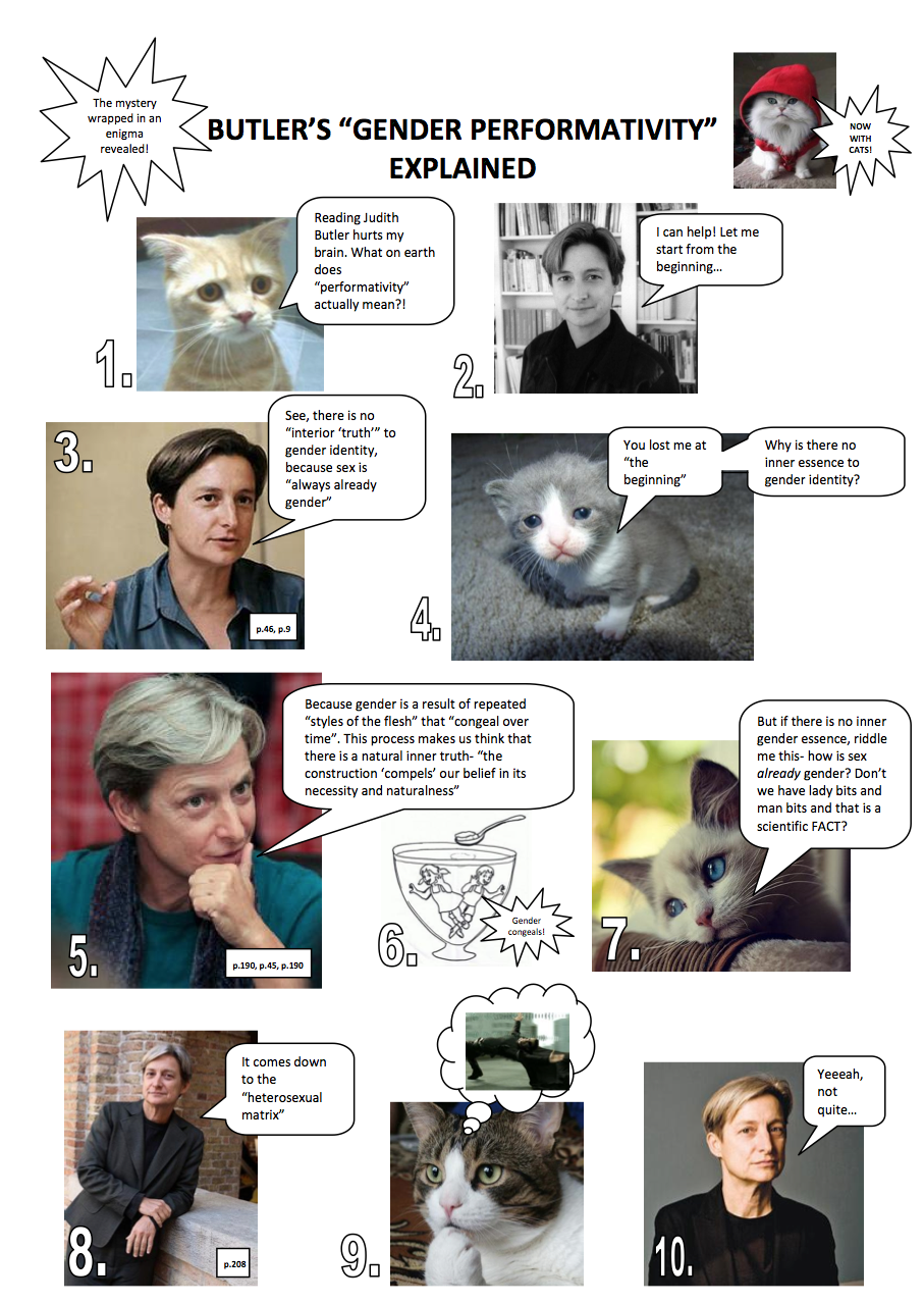 ff4 judith butler explained with cats part one cats know your meme