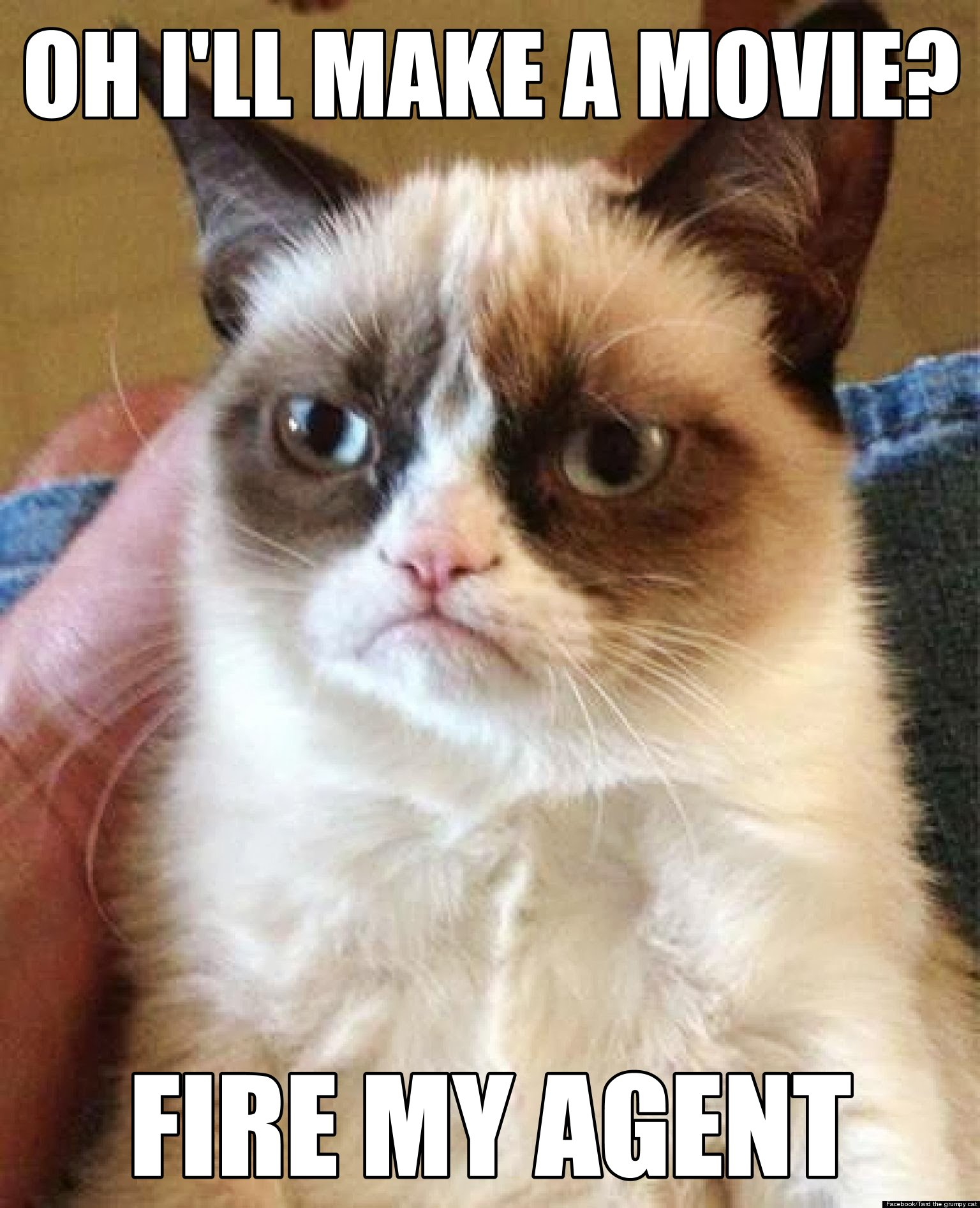 Grumpy cat learns about his movie grumpy cat know your meme ohill make a movie fire my agent facebook tard the grumpy cat thecheapjerseys Gallery