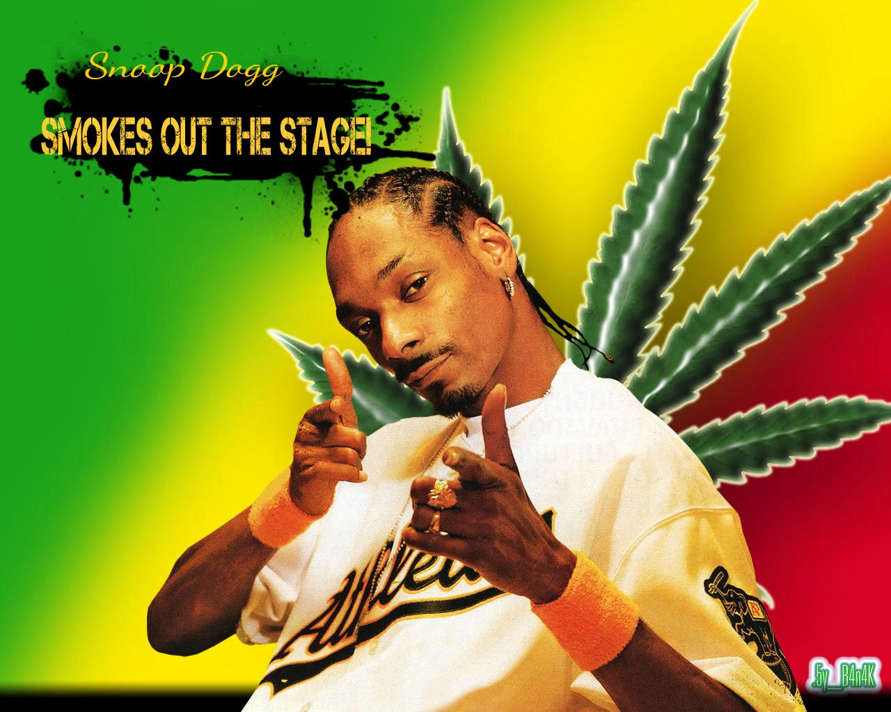 Challenger approaching snoop dogg super smash bros 4 for Snoop dogg fish hat