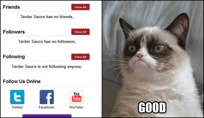 Grumpy Cat Memes No Previous