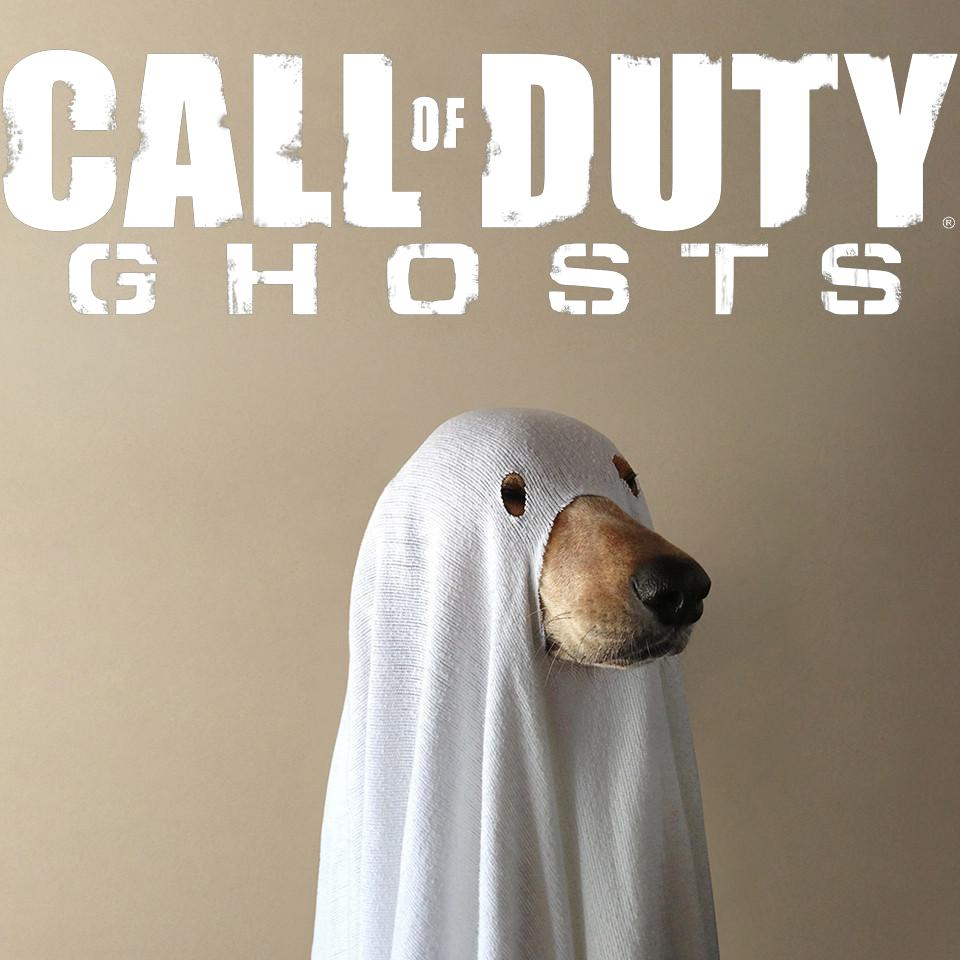 Image 548622 call of duty dog know your meme - Image 548622 Call Of Duty Dog Know Your Meme Acf Jpg