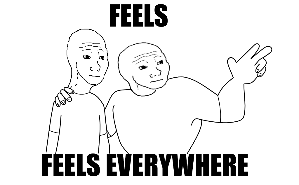 I Have So Many Feels Meme