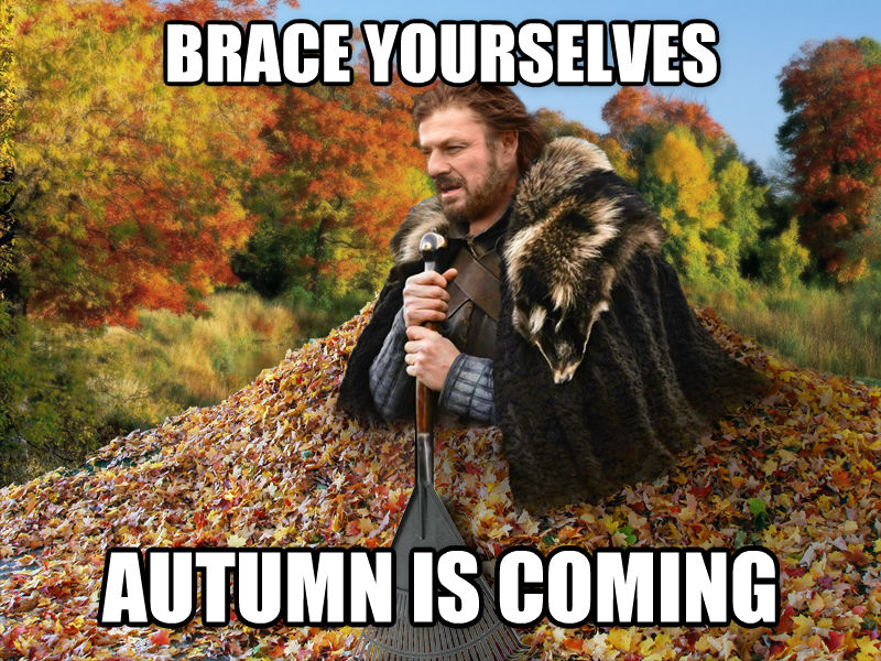 006 image 612573] imminent ned brace yourselves, winter is