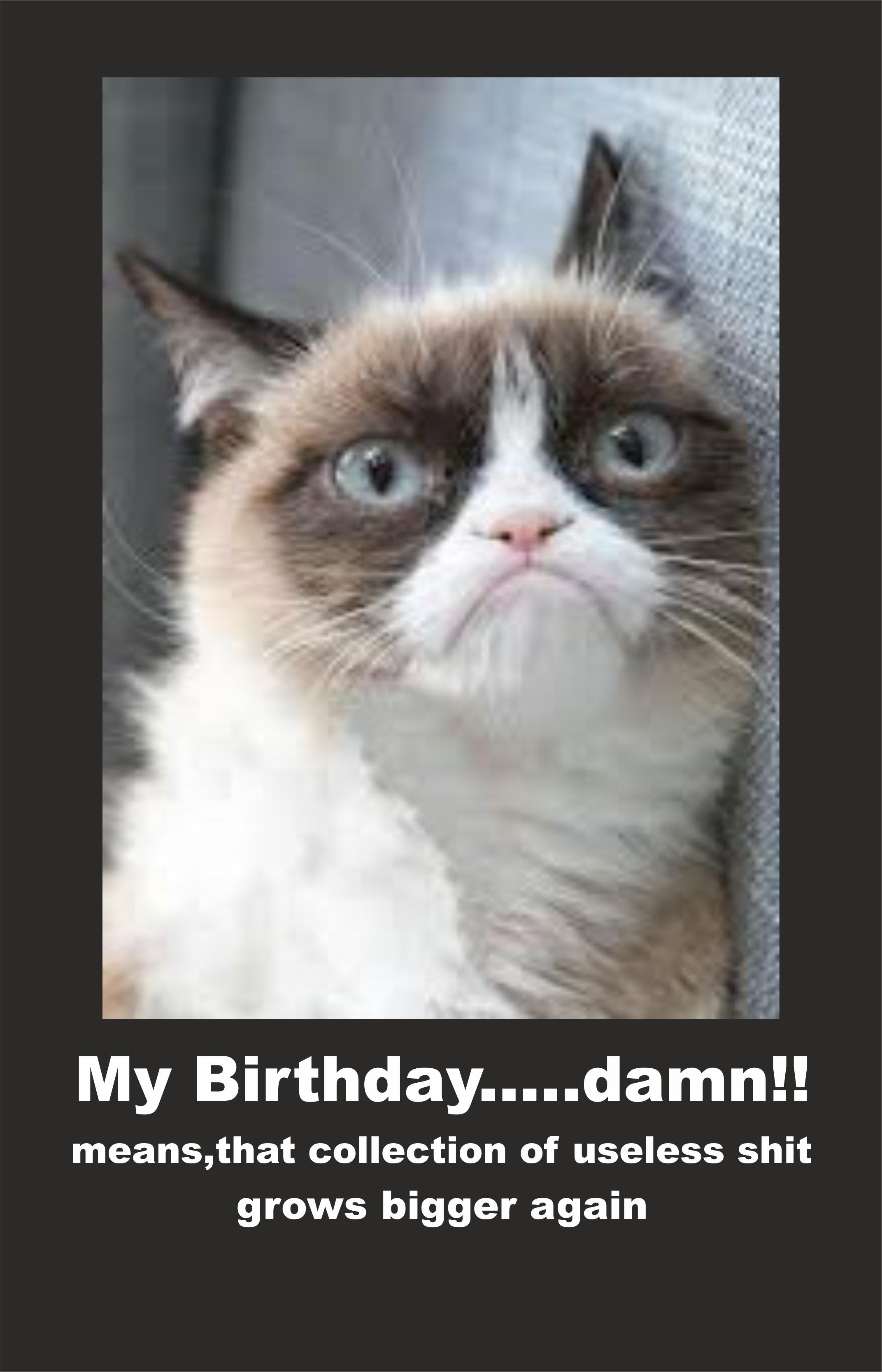2c5 image 614122] grumpy cat know your meme