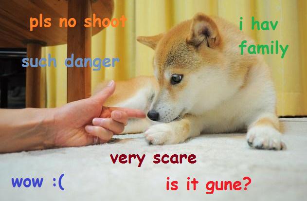 Doge Meme Original