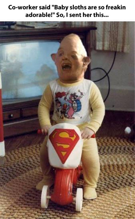 aba baby sloths the goonies know your meme