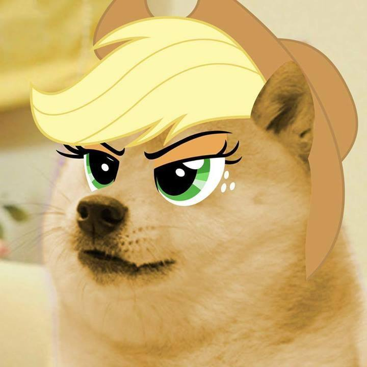 Image 645942 doge know your meme shiba inu face nose yellow mammal skin vertebrate dog like mammal cat head eye cartoon ear solutioingenieria Choice Image