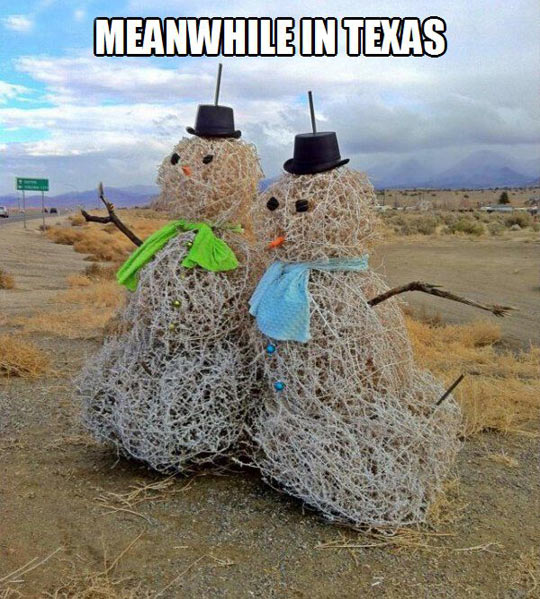 f5e texas snowmen meanwhile in know your meme