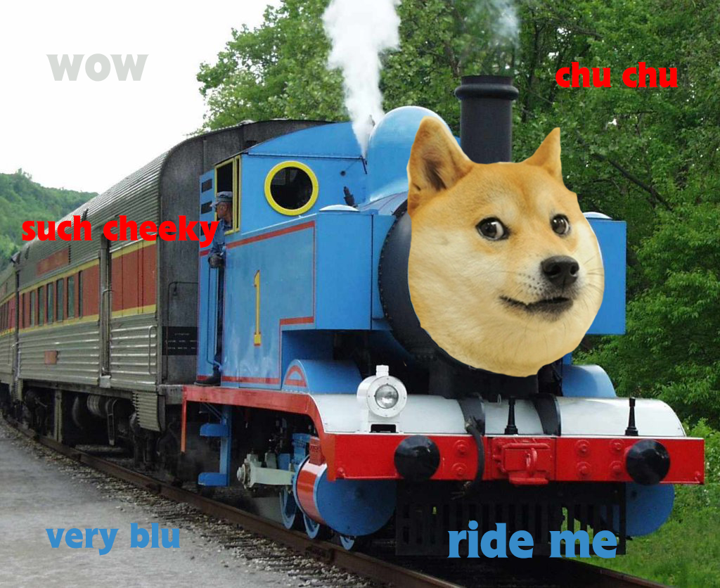 Can Dogs Travel On Trains In Us