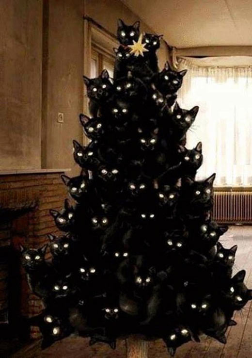 Crazy Cat Lady Christmas Tree | Cats | Know Your Meme